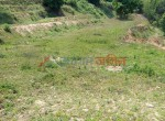 8 and 12 Ropani Land Sale at kot danda
