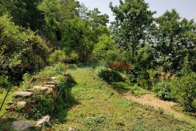 4 Ropani Land Sale at Badikhel, Godawari