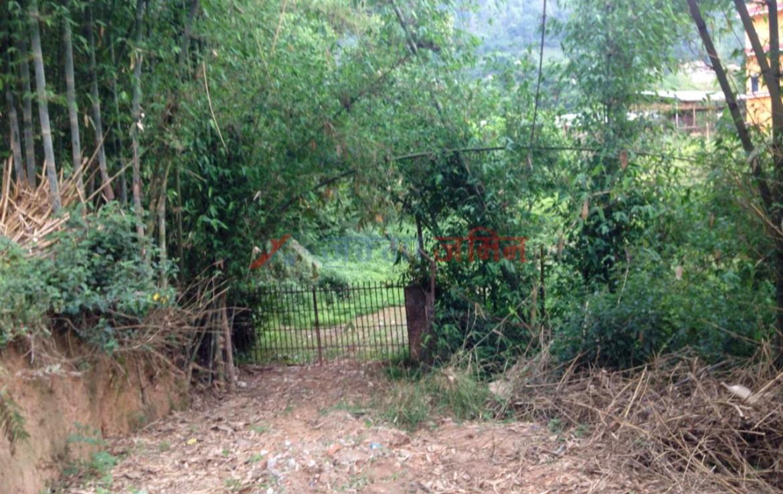 10 Ropani Land Sale at Badikhel, Godawari