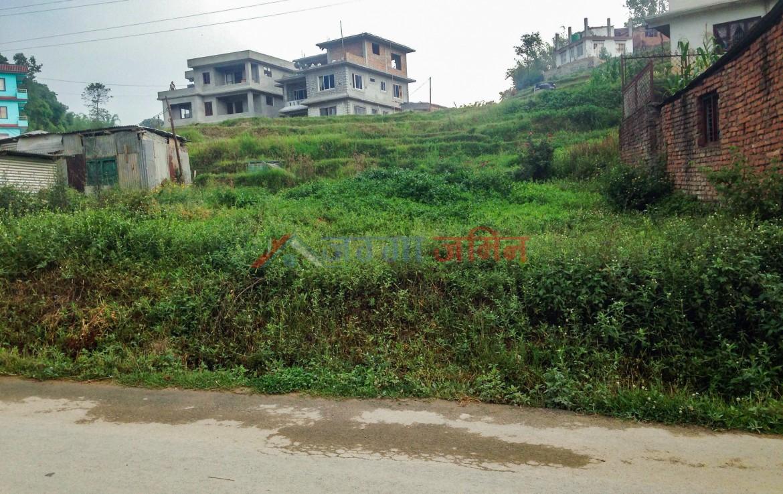 12 Anna Land Sale at Badikhel