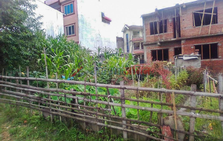 3.2 anna land sale at Dhamaltar, Gongabu, Tokha