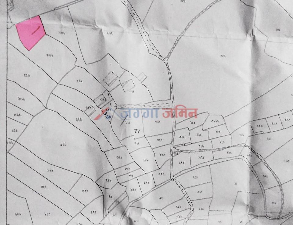 5.3 Anna Sale at Badikhel Godawari, Lalitpur
