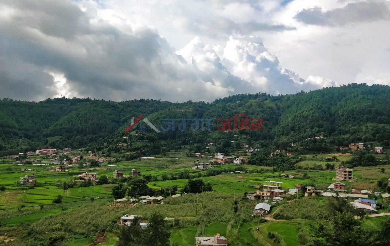 1 Ropani Land sale at Bistachaap, Godawari