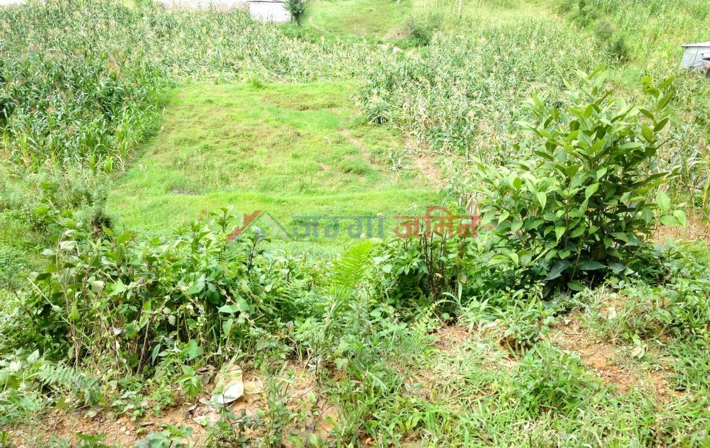 14 anna land at Kitini, Godawari, Lalitpur