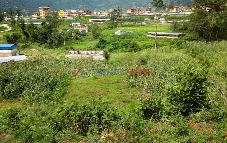 7 anna land at Kitini, Godawari, Lalitpur