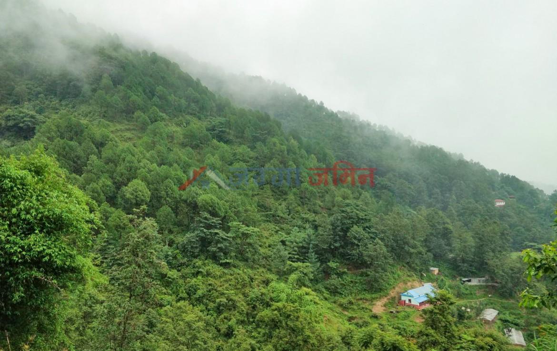 buy land at taulung height, budhanilkntha, narayanthan