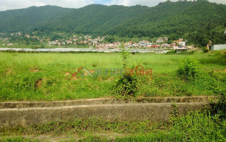 19 anna land at Godawari, Lalitpur
