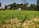24 aana land sale in badikhel godawari-4-2