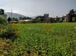 24 aana land sale in badikhel godawari-7