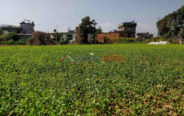 land sale in badikhel