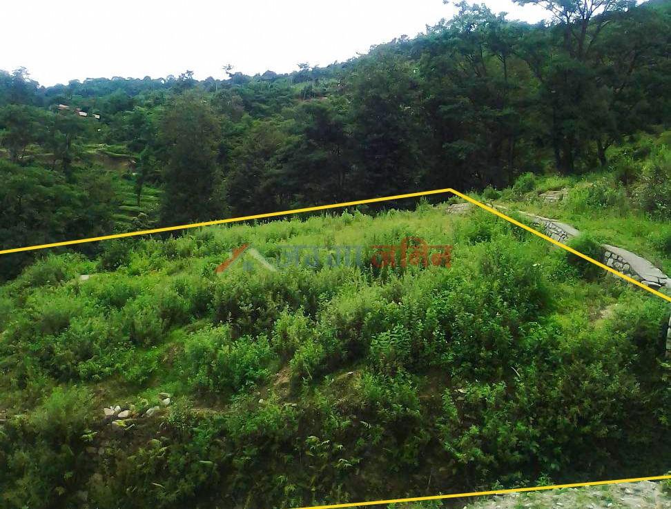 25 Anna Land Sale at Budhanilkantha, kathmandu, buy land