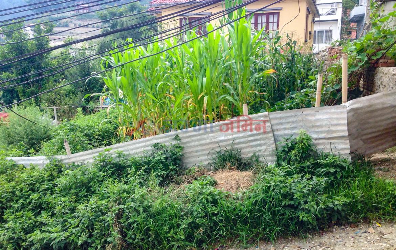 4 Anna land sale at Budhanilkantha, Bishnu, Kathmandu