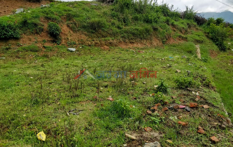 5 Anna Land sale at Jharuwarsi, Godawari