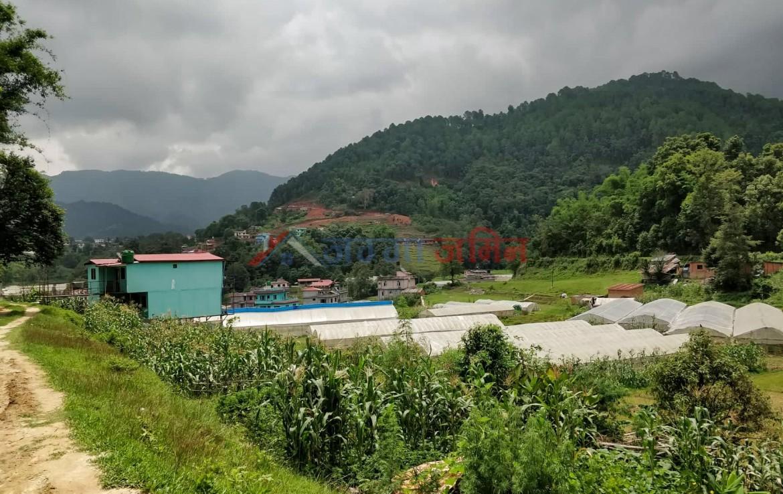 7 Anna Land at Badikhel, Godawari, Lalitpur
