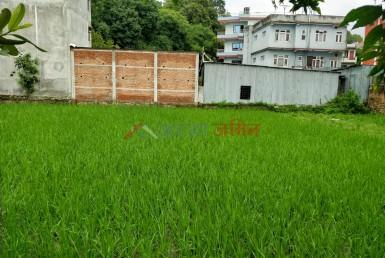 buy 8 anna land at samakushi, ranibari, kathmandu