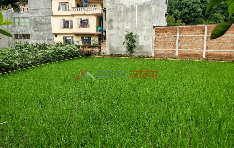 8 Anna land sale at ranibari, samakushi, kathmandu