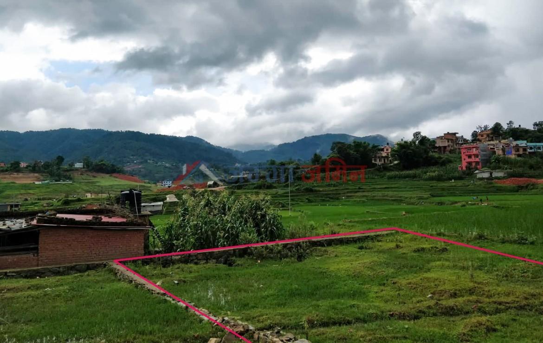 9 anna land at jharuwarsi, godawari