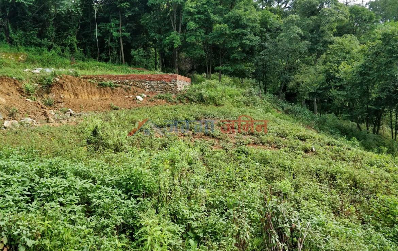 9 Anna Land sale at Badikhel, Godawari