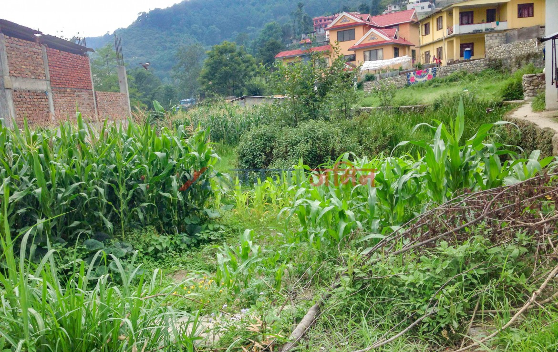9.5 Anna land sale at Budhanilkantha, Bishnu, Kathmandu