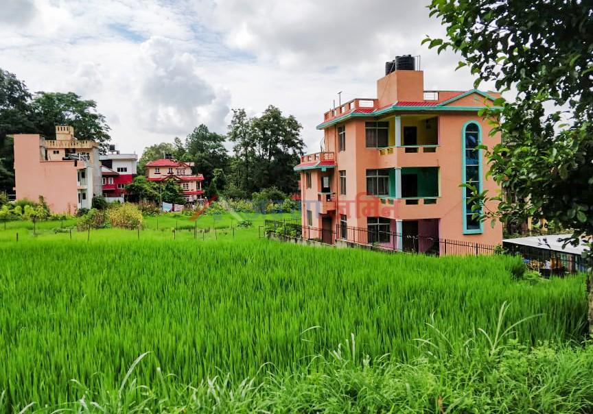 15 Anna budhanilkantha, Narayanthan