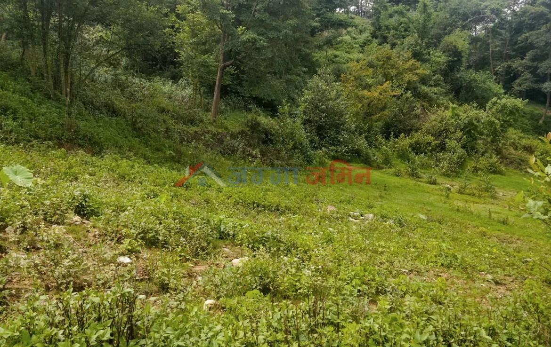 buy land at badikhel, godawari, lalitpur