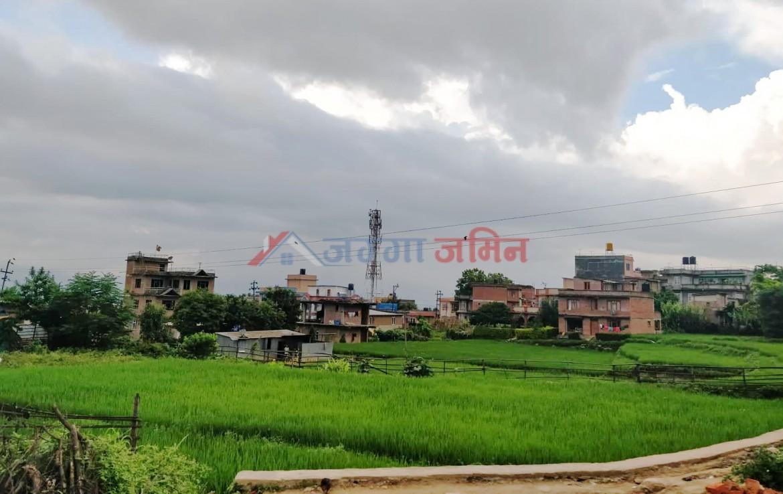 5 aana land sale in Badegaun, Godawari, Lalitpur