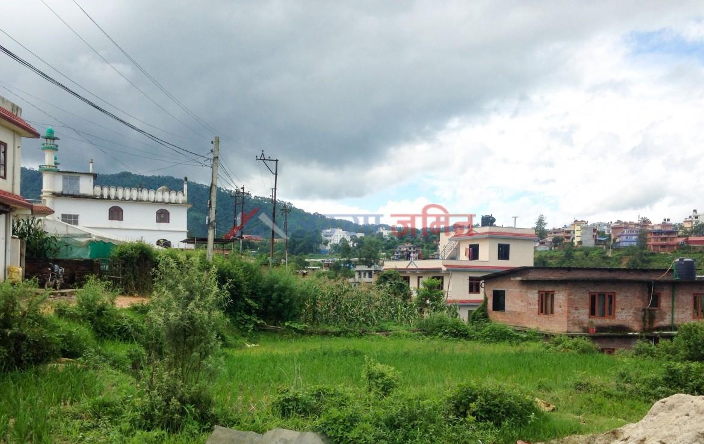 6 Anna land at Godamchowr, hadigaun, godawari