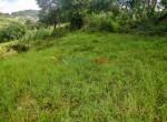 9 ann land near 10 anna 1
