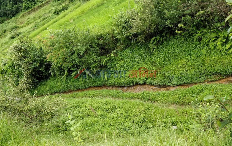 land sale in lele, godawari
