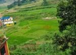 22 aana land jharuwarashi (1 of 5)