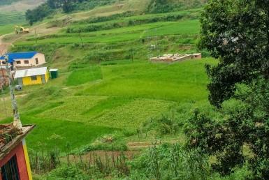 22 aana land sale in jharuwarasi, godawari, lalitpur