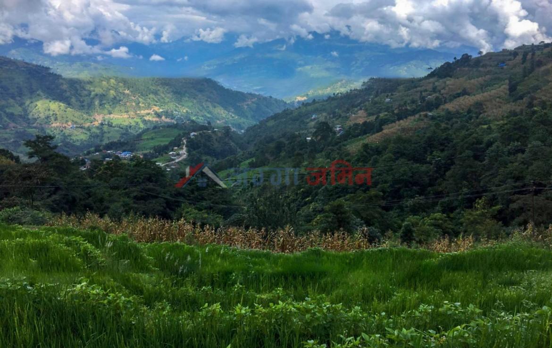 Land Sale in Sankhu