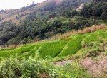 11 ropani land sale at sakhu (1 of 1)