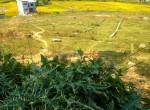 7 Aaana plotted land sale in godawari (1 of 2)
