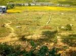 7 Aaana plotted land sale in godawari (2 of 2)