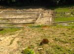land sale at plotting in godawari (2 of 4)