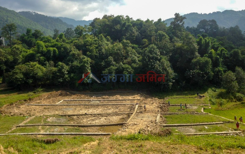 buy lands in nepal