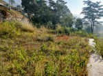 10 aana land sale in taulung-5