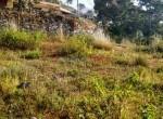 10 aana land sale in taulung-6