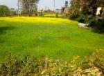 14 aana land sale in godawari-1