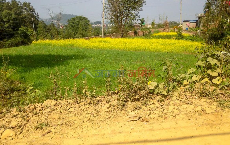 land sale in godawari