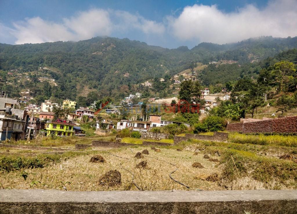 ropani land sale in narayanthan