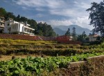 2 ropani land sale in bishnu gha-9
