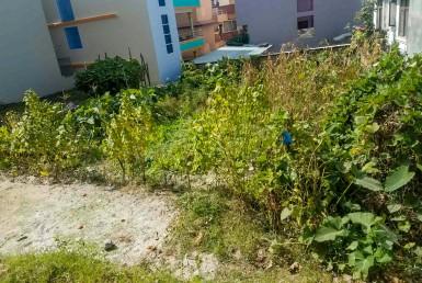 buy land in dhapasi