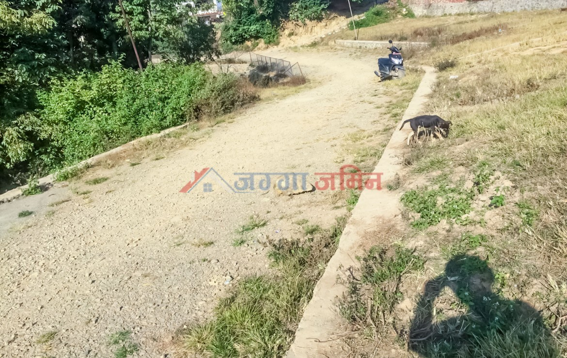 land sale in thecho