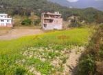 5 aana land sale in thapa gaun-6