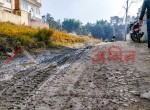 4 aana land for sale in bhangal (22 of 29)