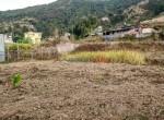 5 aana land sale in bishnu budhanilkantha-9