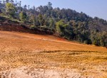 9 ropani land for sale in godawari jyamirkot-10