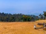 9 ropani land for sale in godawari jyamirkot-11